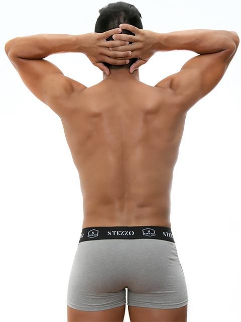 boxer-grey-for-men-underwear-collection-Stezzo-Vivere