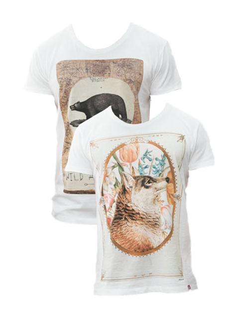 pack-tshirt-designer-urso-lobo-stezzo-vivere