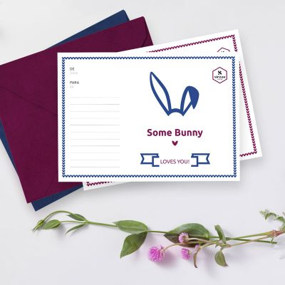 some-bunny-loves-you-valentines-day-postcard